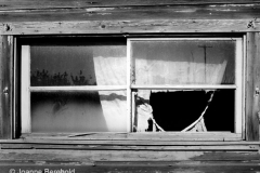 Window and Torn Curtain