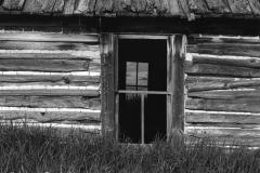Wood Roof and Door
