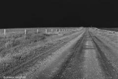Ibex Road
