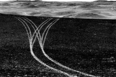 Burnt Tracks